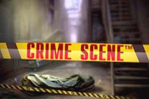 online Spilleautomater Crime Scene NetEnt