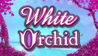 White Orchid IGT spilleautomater thumbnail